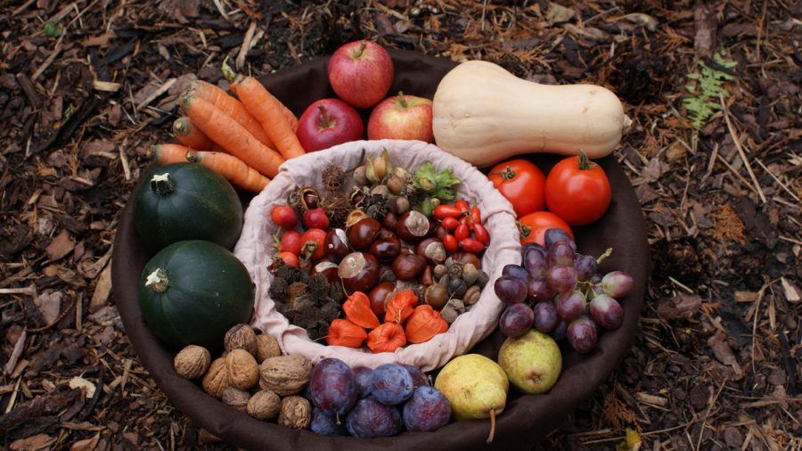 Discovering Delicious Wintertime Fruits and Vegetables