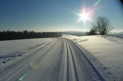 Sunlight Landscape Tracks Winter Sun Snow