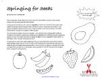 Springing for Seeds