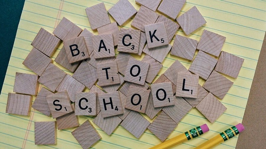 Reflections on Starting the School Year